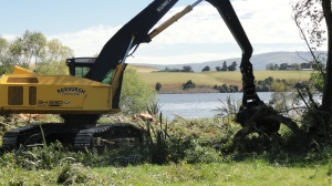 Machinery removing willow